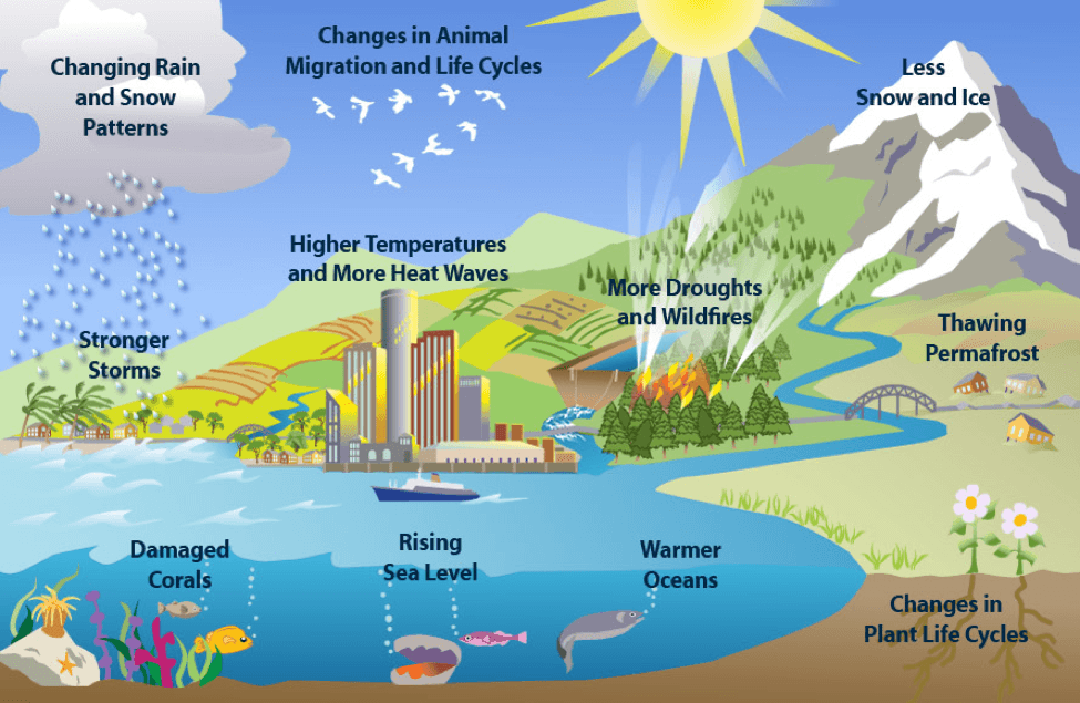 Image result for climate change caribbean